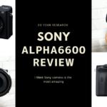 ソニー『α6600』購入レビュー・単焦点E 35mm F1.8で撮影した作例多数!